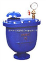 自動排氣閥CARX-10
