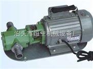 优质WCB手提油泵供应