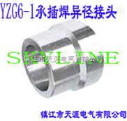 SKYLINE-YZG6-1 承插焊异径接头