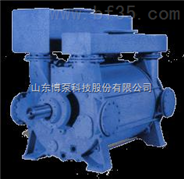 博泵2SK系列水環真空泵.淄博博泵