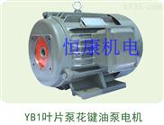 供应Y2JD液压专用电机,YB1叶片泵配套电动机